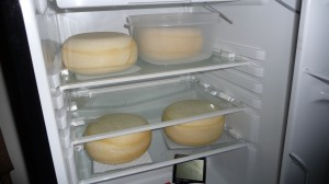 Four 4 lb Gouda's Aging In Small Fridge With External Thermostat