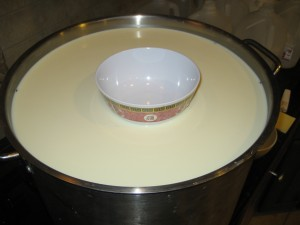 Rennet coagulated cow's milk, spinning bowl flocculation time testing.